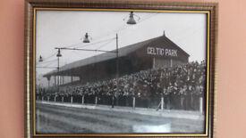 belfast celtics old ground & greyhound racing stadium framed sign