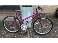 Ladies/girls mountain bike, Sentinel Essence, very good condition, oversize tubing and 15 gears.