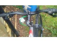 Carrera vengeance. adult bike