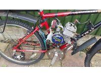 Petrol Moutian Bike 80cc