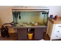 Fish tank rena aqualife 350 litre tank stand and light unit