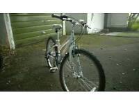 Girls mountain bike - Raleigh Krush