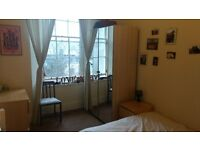 Double room in city centre flat share