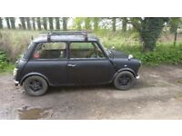 1988 classic mini has 11 months mot
