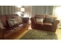 Buffalo leather sofas