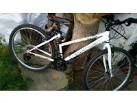 Ladies mountain bike - excellent condition / perfect working order