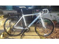 Carrera Road Bike(52cm)