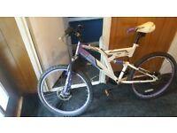 dunlop cosmos 24inch wheels mountain bike