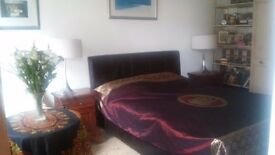 AVAIL 20.12.to 8 Jan ! FLAT ALL MOD CONS in KEMPTOWN, dble room suit couple m/f £125 p w