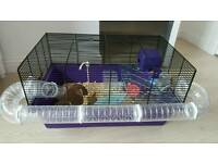 Two Hamsters with Cage and Accessories (x 2)