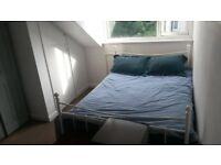 Double Artic Room to let