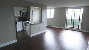 Beautiful and Luxurious Suites Available for Rent Kitchener / Waterloo Kitchener Area image 3