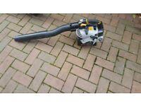 titan petrol leaf blower