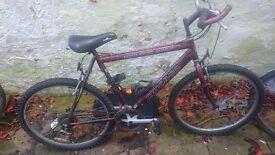 18 gear basic bike to sell