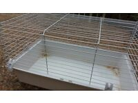 Free indoor rodent cage