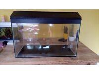 Large aquarium/fish tank/gerbil tank