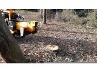 Essex And Suffolk Tree Stump Grinding And Tree Root Removal