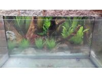 3ft glass fish tank & accessories