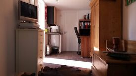 Double room with Ensuite / Detached, self-contained annex with Ensuite to Rent Monday - Friday