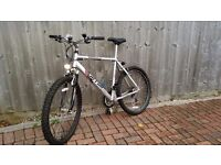 "Falcon Montana 22"" Hard Tail Mountain Bike"