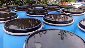 200 lt plastic barrels