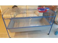 Ex-LARGE rabbit cage / guinnea pig home / hutch