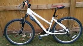 17 inch Ridgeback Terrain MX 3 ladies bike