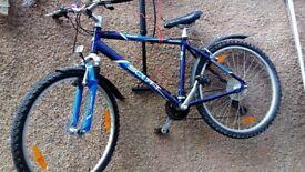 Scott Mountain Bike - Medium frame