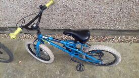 Junior bike in need of repair