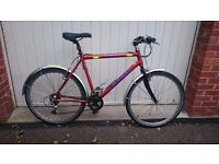 Women's Hybrid Bike / Bicycle 26'