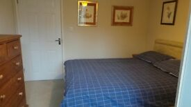 Double room to rent Good size,Parking.