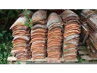800+ used clay pantiles for sale