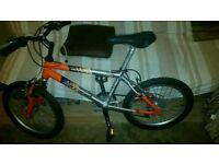 Barracuda XC250 Bike.