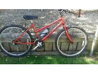 """Raleigh Max 26"""" wheels,15 gears, in vgc."""