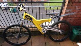 Bike, Reef mountain bike (with carbon fibre frame)