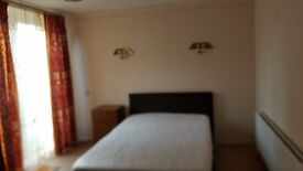 Large and Spacious Double Room in a Nice House