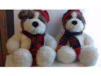 Adorable pair of soft toy scotish dog