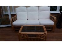 3 seater conservatory sofa and 2 glass topped tables
