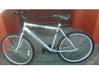Adult mountain bike in great condition