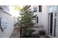 1 Bedroom Flat in Somerset House, Acton Lane, Chiswick W4