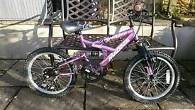 Girls 5 speed mountain bike.