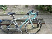 Giant racing bike bargain