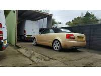 Audi a4 1.8t convertible in rare yellow SWAP