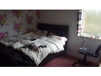 Monday to Friday letting. Double room in a 2 bedroom flat. 320 including all bills