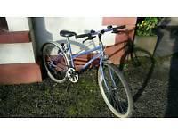Raleigh Calipso mountain bike