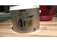 Valspar premium matt paint in botanical beauty