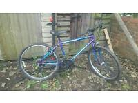 Raleigh Sabre mountain bike