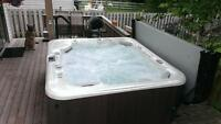 6 Person Salt Water Hot Tub - Paid 12,000
