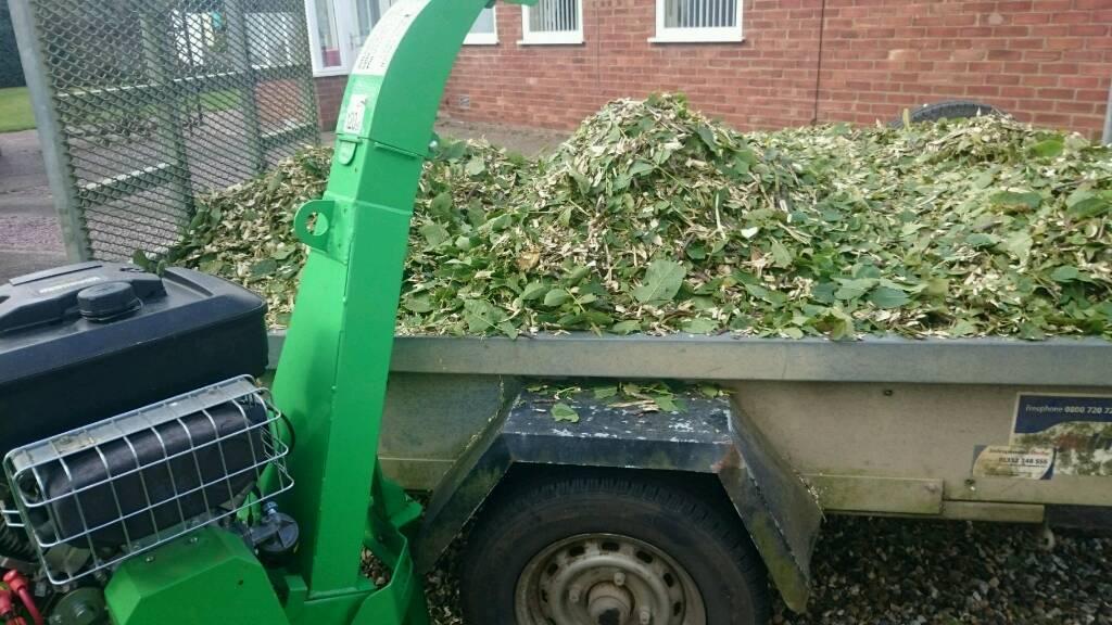 Garden maintenance and clearance
