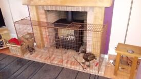 Fireguard.. adjustable to fit most fireplaces